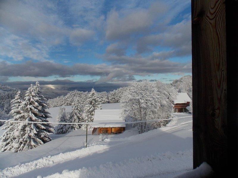 Chalet tout confort avec vue splendide sur la vallée., casa vacanza a Laffrey