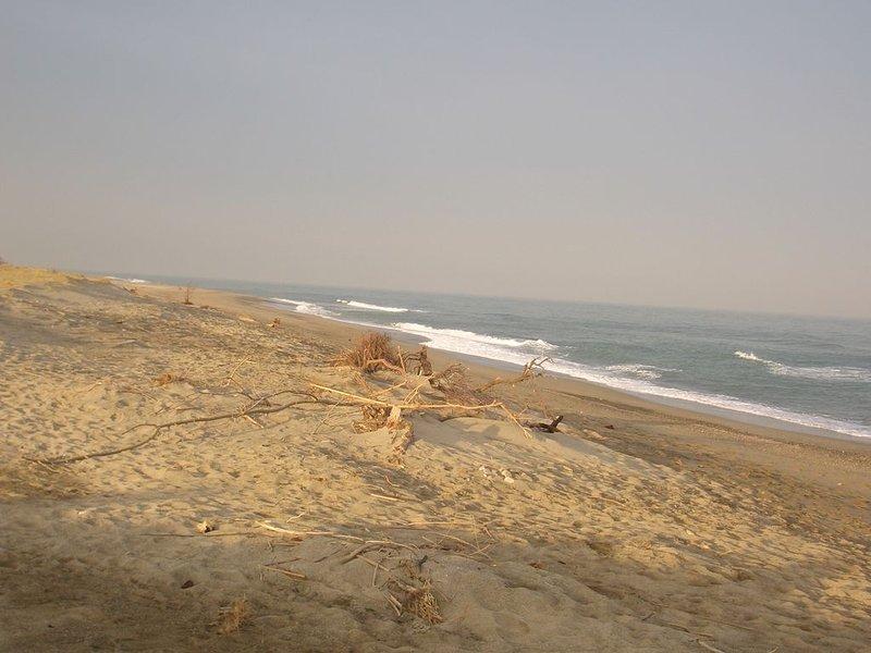 Playa de Argeles en el mar - (lado izquierdo) costa salvaje