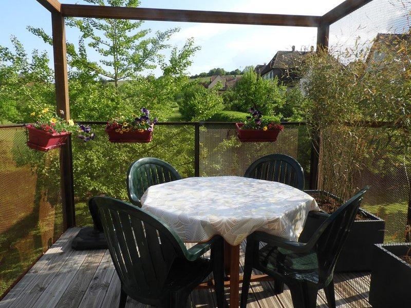 Gîte 3 *** avec terrasse suspendue au coeur des vignes, aluguéis de temporada em Epfig