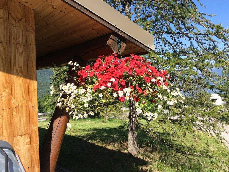 Chalet traditionnel en bois, holiday rental in Saint-Sauveur