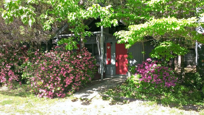 Bear Paw Cottage (#6 King)Adorable;Hot Tub;Pet Friendly;2 Adults/2 Children Max, vacation rental in Sautee Nacoochee
