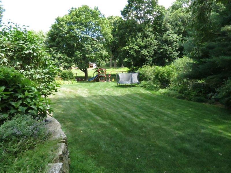 lower back yard