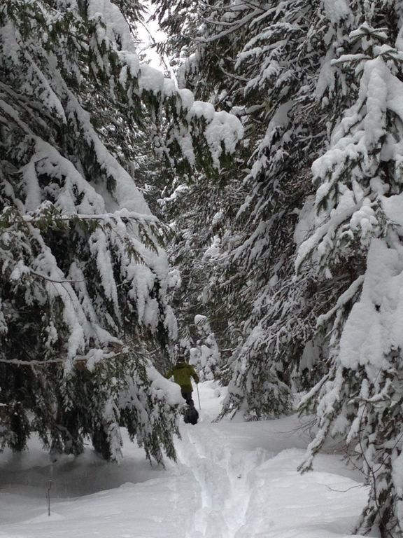 X-country skiing in Sandon, BC, just a 15 minute drive from Loki's Lodge