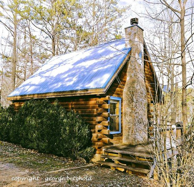 MacLeod cabin in Scottish Woods, aluguéis de temporada em Murphy