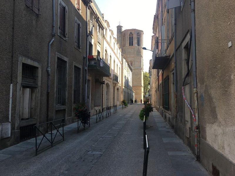 Beautiful, historic 4 bedroom apartment in the center of town., vacation rental in Pennautier