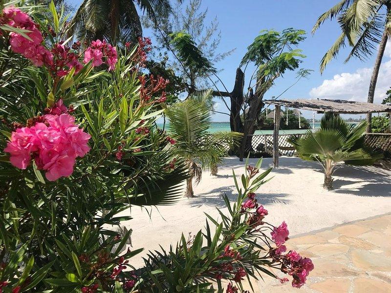 Kimurimuri - Gorgeous Beach Apartment, vacation rental in Michamvi