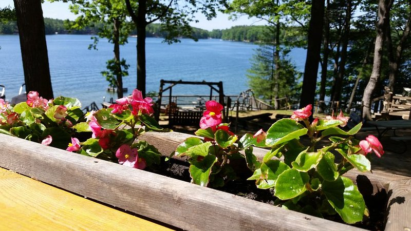 Spider Lake Log Cabin # 7 ~ Amazing waterfront views!, aluguéis de temporada em South Boardman