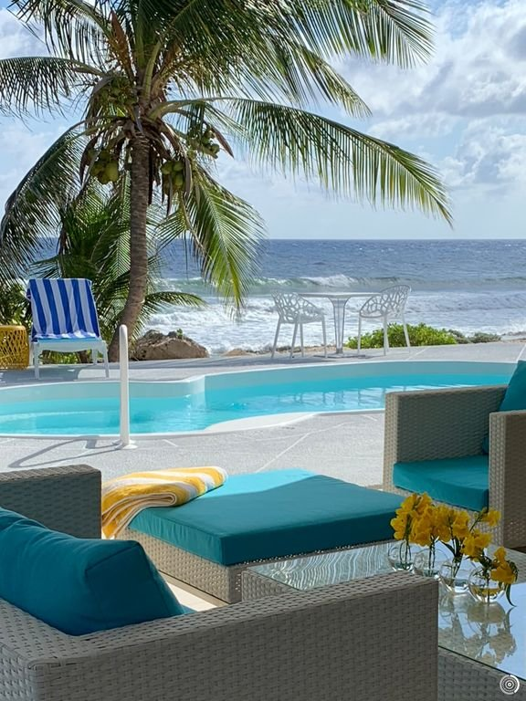 Great pool deck surrounded by coconut palms and the Caribbean Sea.