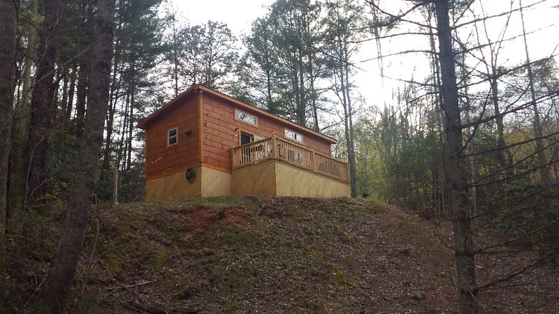 New Cozy Cabin w/ Mountain View - For Couples, holiday rental in Franklin