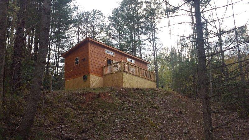 New Cozy Cabin w/ Mountain View - For Couples, alquiler de vacaciones en Franklin