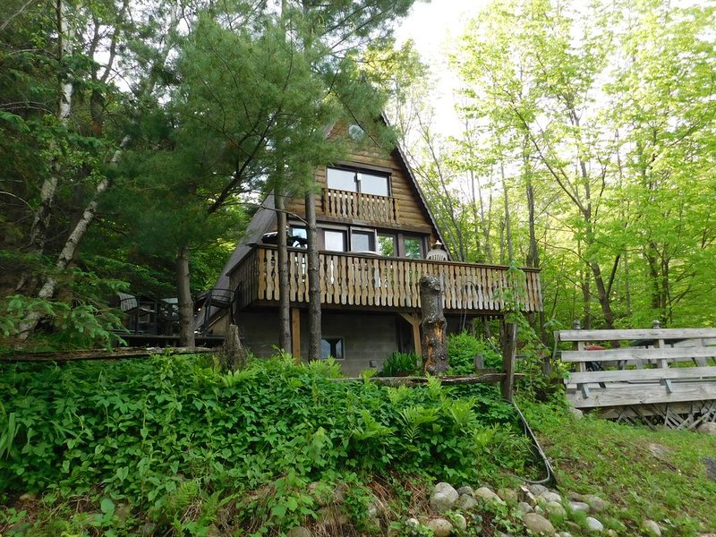 Pine Tree Lodge Aframe Chalet, holiday rental in Northville