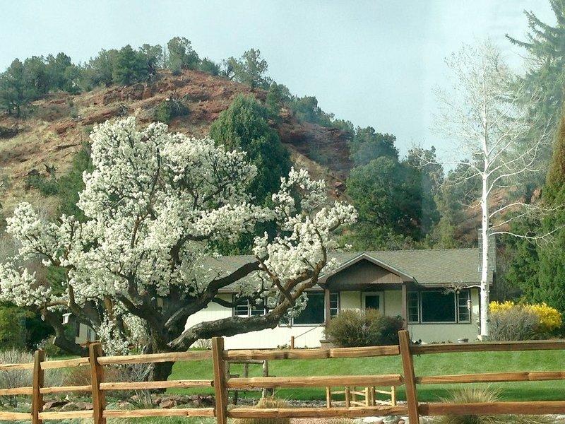 Family/Views/Spacious/Hot Tub/Hike/Bike/Ski/Raft/Hunt/Firepit/Storm King Mtn, holiday rental in Glenwood Springs