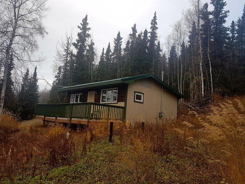 Peaceful Hillside Refuge to Enjoy Aurora, location de vacances à Fairbanks