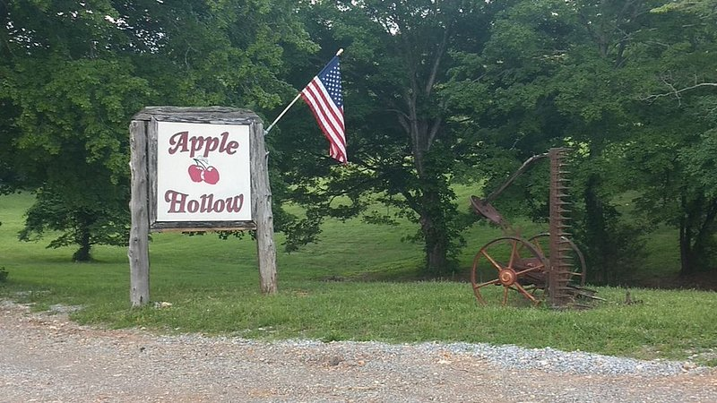 2 Bed / 1 Bath - Cabin at Apple Hollow, holiday rental in Clarksville