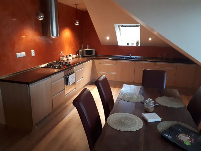 Attic with a terrace in the wider center (4), holiday rental in Samorin