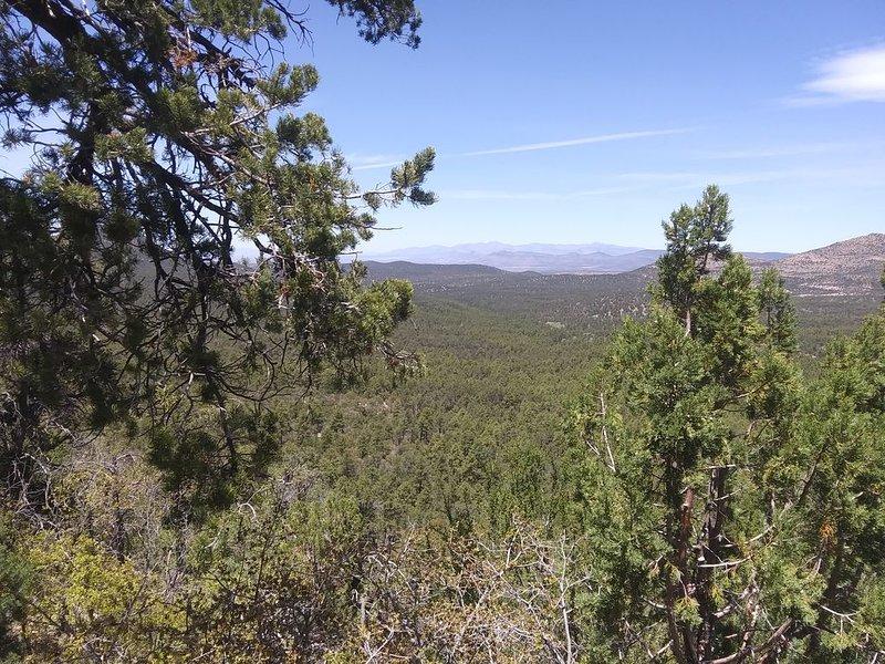 Southwest New Mexico,come experience the real West, location de vacances à Silver City