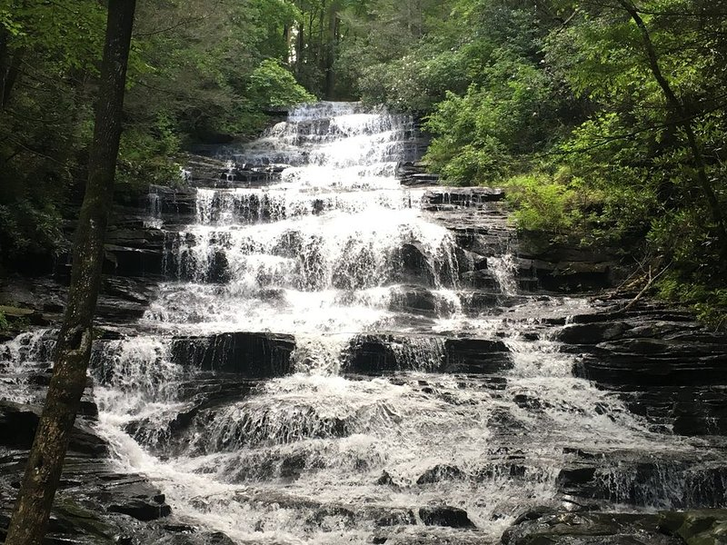 Secluded in the forest, yet minutes away from many activities for your enjoyment, holiday rental in Lakemont