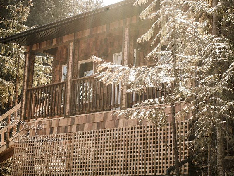 Brand new, Cozy One Bedroom Mountainside Cabin, Beautiful Views! Sauna Included!, holiday rental in Nelson