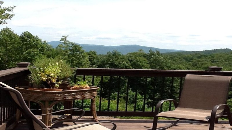 New Mountain Cabin With All The Amenities Of A Home, holiday rental in Nebo