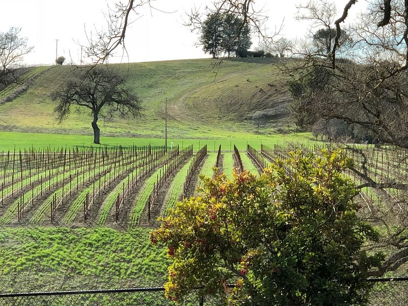 Vacation in the vineyard, casa vacanza a Paso Robles