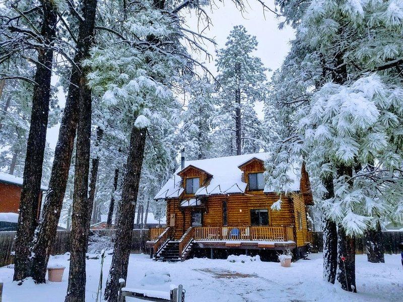 Cabin Fever! snow, snow snow, location de vacances à Kachina Village