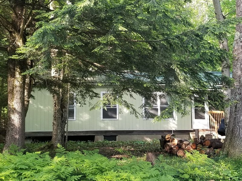 Canada Lake Cottage tucked in the woods, holiday rental in Canajoharie