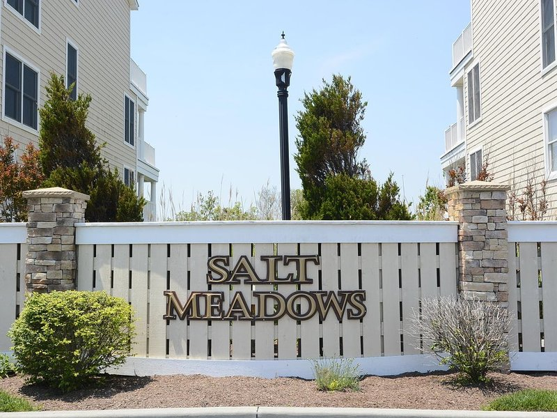 Custom home with less crowded beach! Practice safe social distancing!, vacation rental in Fenwick Island