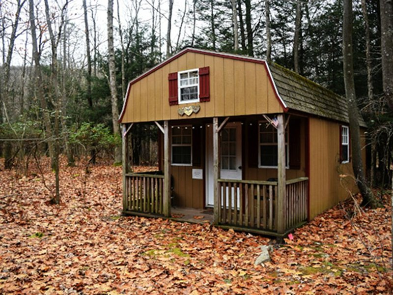 Into The Wild- Rustic Cabin Tucked In The Woods, Near Abrams Creek, holiday rental in Mount Storm