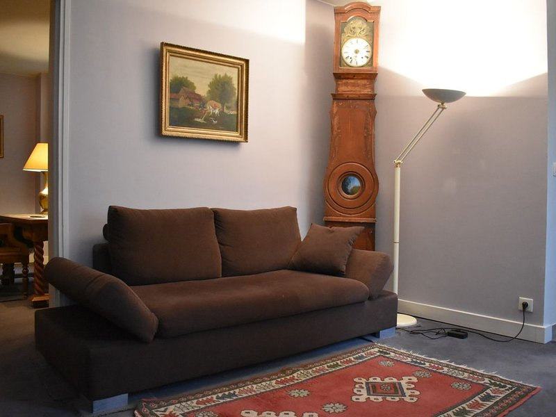 Spacious 1 Bedroom Apartment in Paris 15th, holiday rental in Vanves
