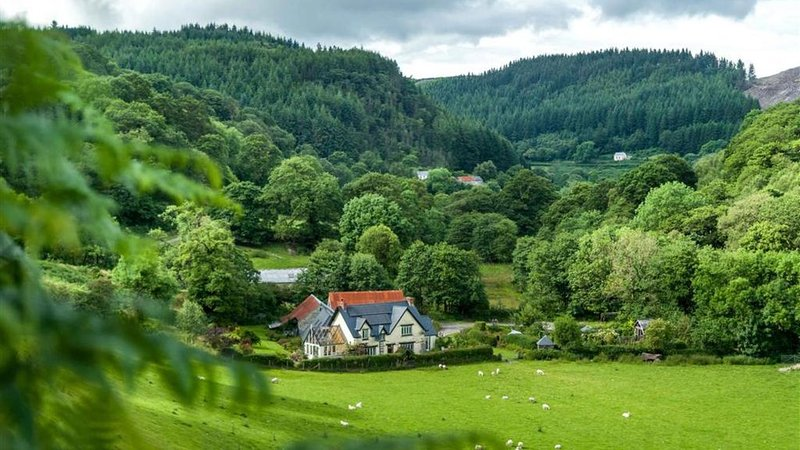 Nuthatch Cottage - One Bedroom House, Sleeps 2, holiday rental in Llanwrtyd Wells
