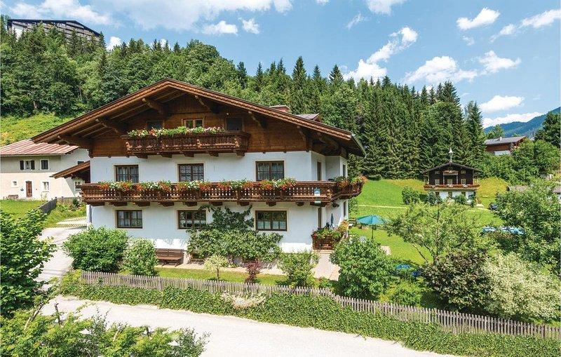 2 Zimmer Unterkunft in Mühlbach, holiday rental in Muehlbach im Pinzgau