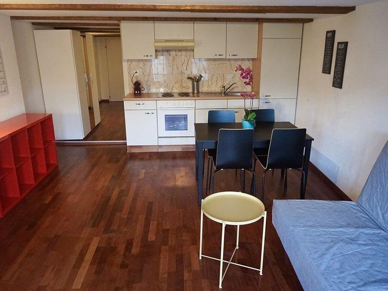 ZH Niederdorf V - HITrental Apartment, location de vacances à Obfelden