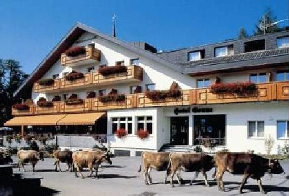 Ferienwohnung Wildhaus für 4 - 6 Personen mit 2 Schlafzimmern - Ferienwohnung, vacation rental in Wildhaus