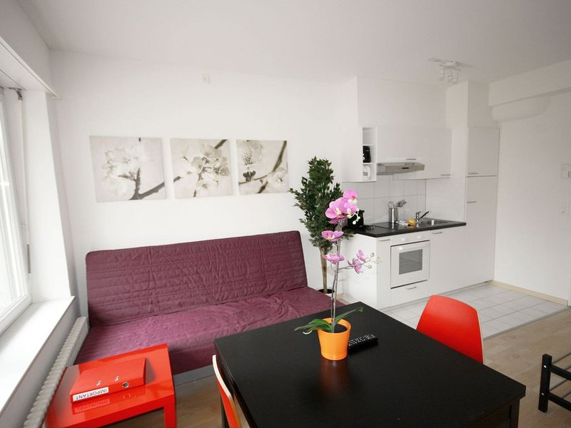 ZH Inler - Stauffacher HITrental Apartment, holiday rental in Meilen