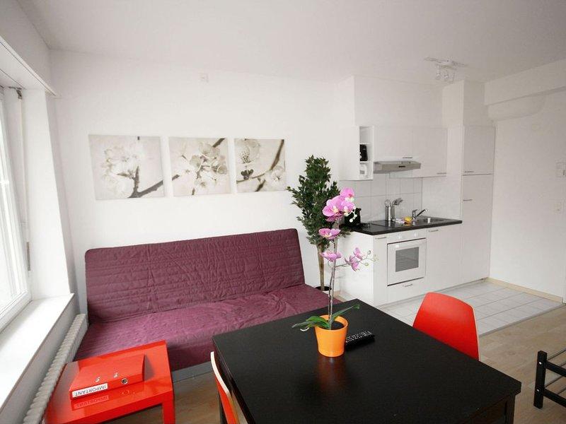 ZH Inler - Stauffacher HITrental Apartment, holiday rental in Zurich