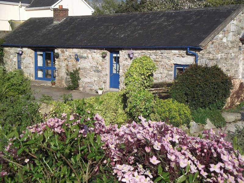 300 Year Old Converted Stone Barn near the HOOK Peninsula, holiday rental in Hook Head
