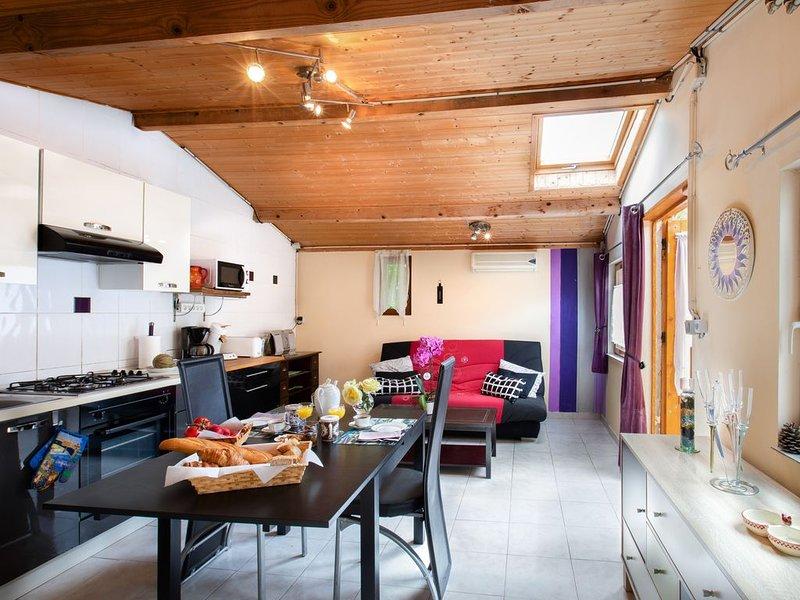 Gîte La Leude tout confort au centre du Pays cathare, holiday rental in Blomac
