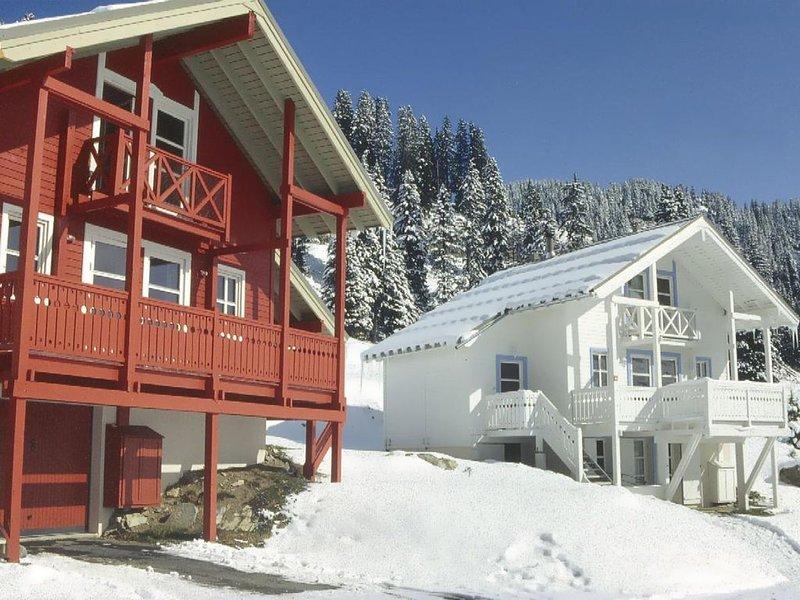 Chalet, terrasse, cheminée ou poêle à bois, télévision, 125m², Flaine, vacation rental in Flaine