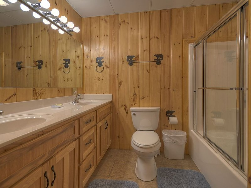 Terrace Level Bathroom with tub/shower combo