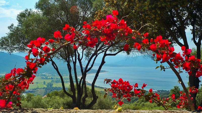 Villa stylishly furnished, in secluded gardens with breathtaking views, holiday rental in Serra-di-Ferro
