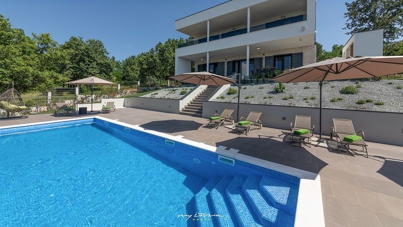 Beautiful modern villa with private pool, holiday rental in Ruzici