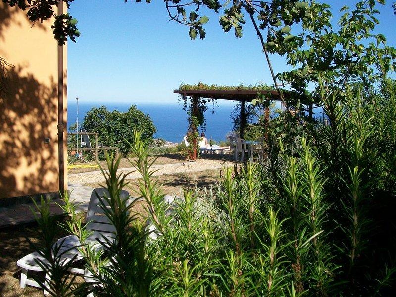 Cipressa fraz. Lingueglietta piano terra CITRA 008021-LT-0040, location de vacances à Lingueglietta