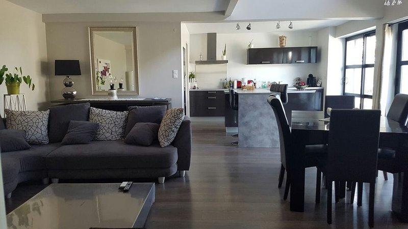 BELLE MAISON CONTEMPORAINE SITUEE DANS UN ENVIRONNEMENT CALME, holiday rental in Cavanac