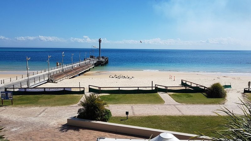 Beachfront and Dolphin Feeding Viewing from your private deck, vacation rental in Tangalooma