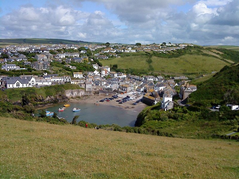 Pretty 2 bedroom listed fisherman's cottage in a picturesque harbour, holiday rental in Port Isaac