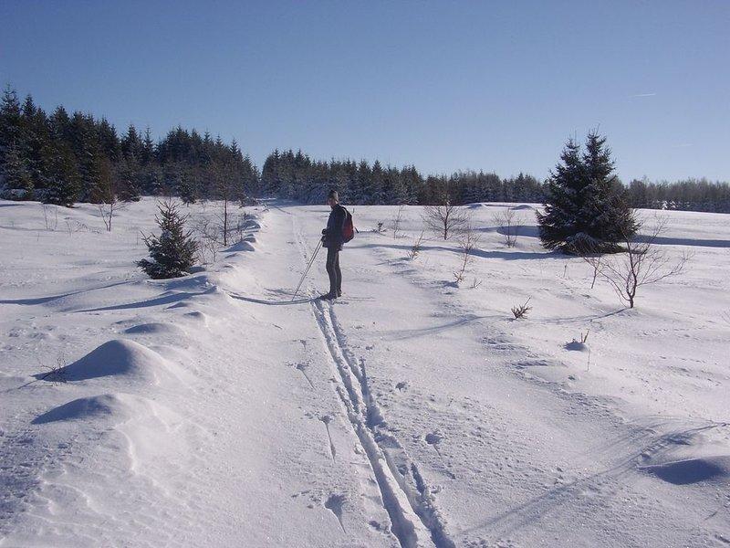 Deportes de invierno en los Montes Metálicos