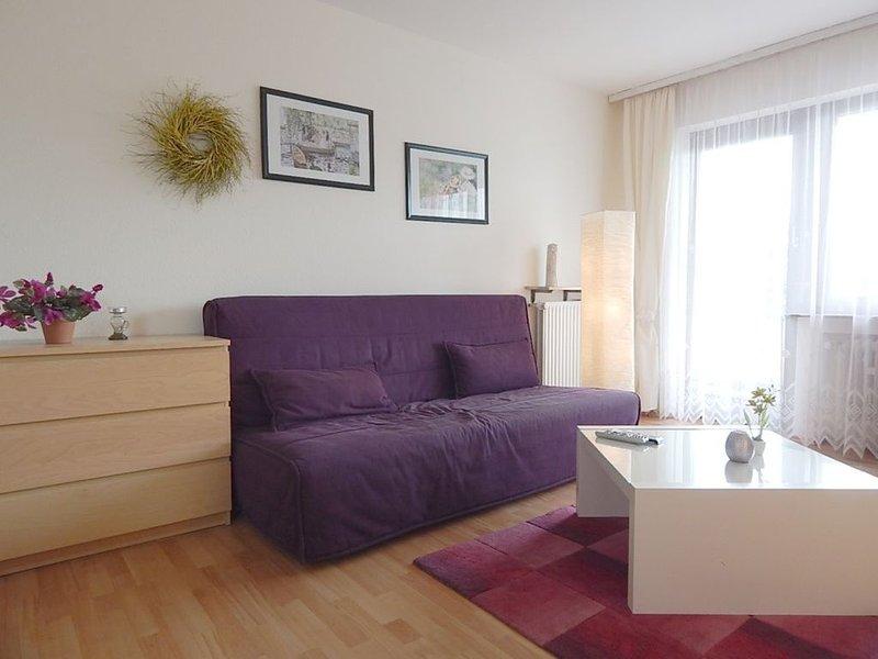 Modernes, kleines Apartment in ruhiger Seitenstraße ganz nahe zum Rhein gelegen., location de vacances à Ransbach-Baumbach