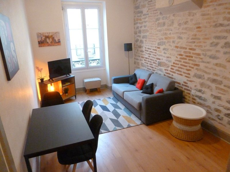 Bel appartement aux portes du centre-ville, location de vacances à Dijon