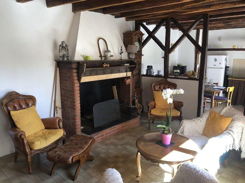 Gîte de l'arac , Maison tout confort avec cheminée . Vue sur la montagne ,, holiday rental in Guzet Neige