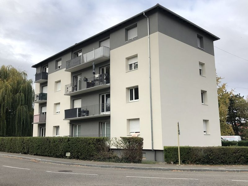 F1 dans le vignoble d'Alsace a 5 min de Colmar au calme, holiday rental in Walbach